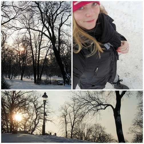 Promenad i ett soligt vinterlandskap.