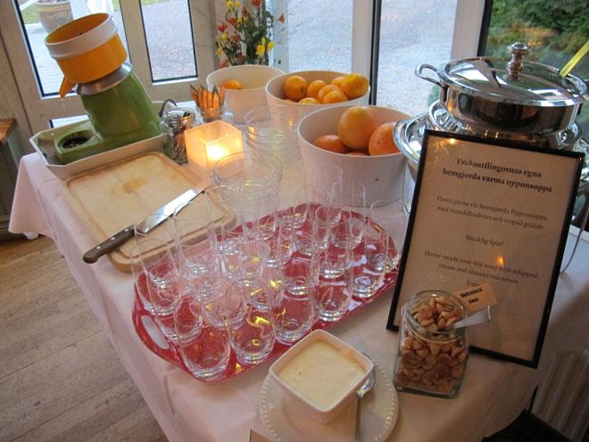 Pressa din egen juice och smaska i dig hemmagjord nyponsoppa.