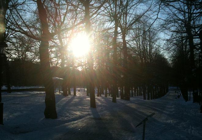 Underbara vinter.