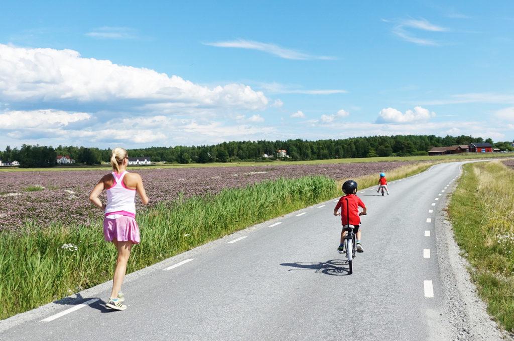 Tack vare öppna fält ser vi långt i båda riktningar och kan stanna om det kommer någon bil.