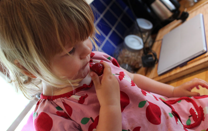 hemgjord jordgubbssylt