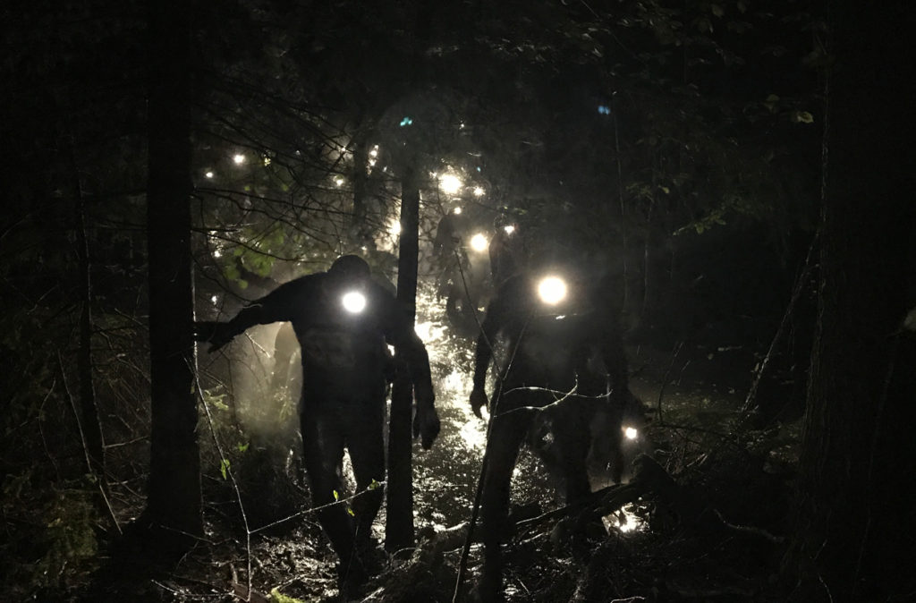 Nattruset - löpare på väg upp från ett träsk.