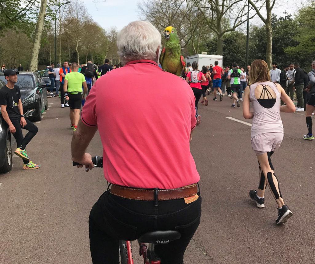 Ett par kilometer från mål kom en man på cykel med en papegoja på axeln farandes nedför vägen.