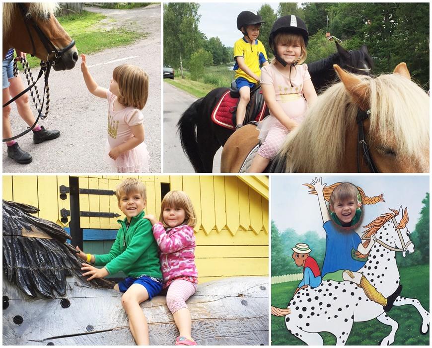 rida häst i småland