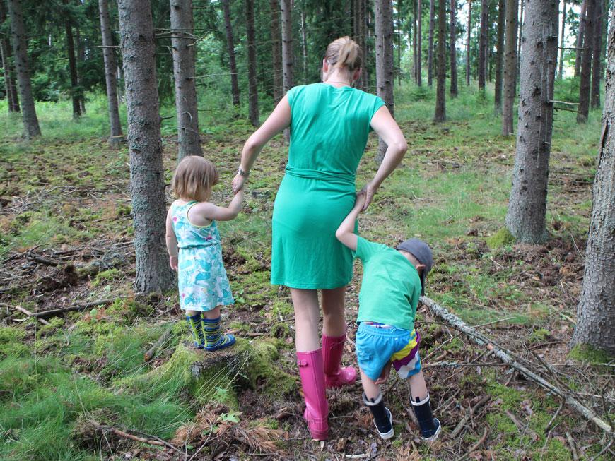 skogsutflykt med smultron