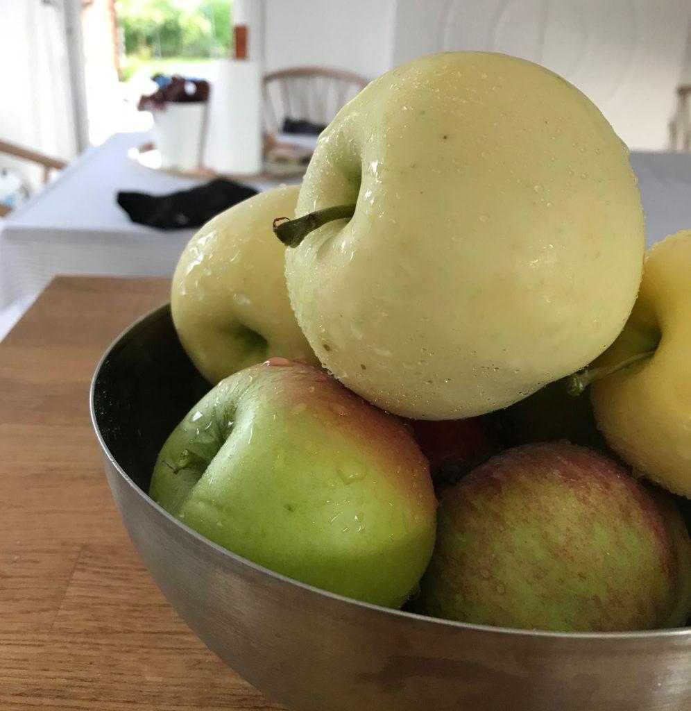 Svenska äpplen från min trädgård.